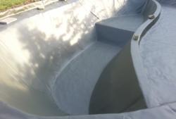 Freiformbecken Schwimmteich